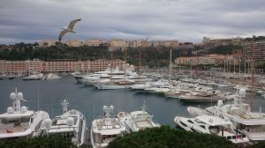 Monaco....& a seagull